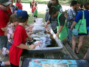 Children can enjoy many hands-on, nature-related activities and collect free school supplies at Camp Bayou's annual Back to School-Back to Nature event Aug. 6. The event will take place from 10 a.m. to 2 p.m. at the Camp Bayou Outdoor Learning Center, 4202 24th St. S.E., Ruskin. Admission is free. Photo courtesy of Dolly Cummings