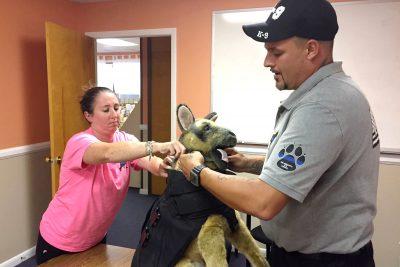 Ropa de protección para perros de la policía - Observador Noticias 1