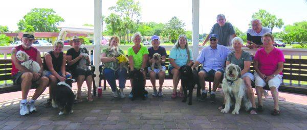 Nuevo parque del perro - Observador Noticias 2