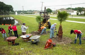 About a dozen volunteers turned out to help Florida Home Partnership plant several Washingtonia Palm trees at Bayou Pass Village Phase 4 in Ruskin on Earth Day, April 22. The project was made possible with a portion of a $219,000 grant presented to FHP from Wells Fargo.