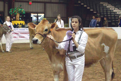 Angela Lander with her cow Angel at the 2015 Florida State Fair earlier this year. She was runner-up in the Grand Champion category.