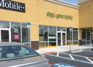 Area residents will find the new Dog Gone Holistic pet store near Dunkin' Donuts at 13131 U.S. 301 S. in Summerfield Square, just north of Big Bend Road in Riverview.