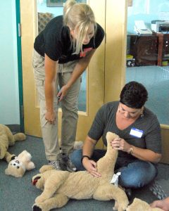 Alicia Oxley, of Tampa, learns how to check the pulse of a dog under the watchful eye of class instructor Pam Farinas.