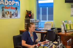 Receptionist and kennel specialist Debbie White works at the front desk.