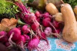 Fresh vegetables, fruit, cheese, garden plants.
