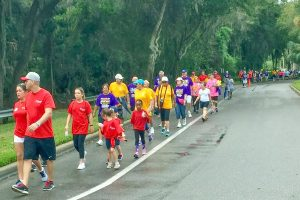 Sixty-two teams walked in and raised money for the 2016 South Shore Walk to End Alzheimer's, now in its 10th year.